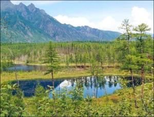 regiunea Amur