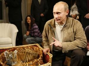 Putin cu tigru
