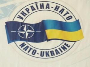 ucrainenii-s-ar-pronunta-in-favoarea-aderarii-la-nato-daca-ar-avea-loc-un-referendum-pe-aceasta-tema-278228-1
